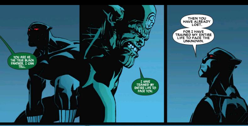 black-panther-secret-invasion-e1517261484510